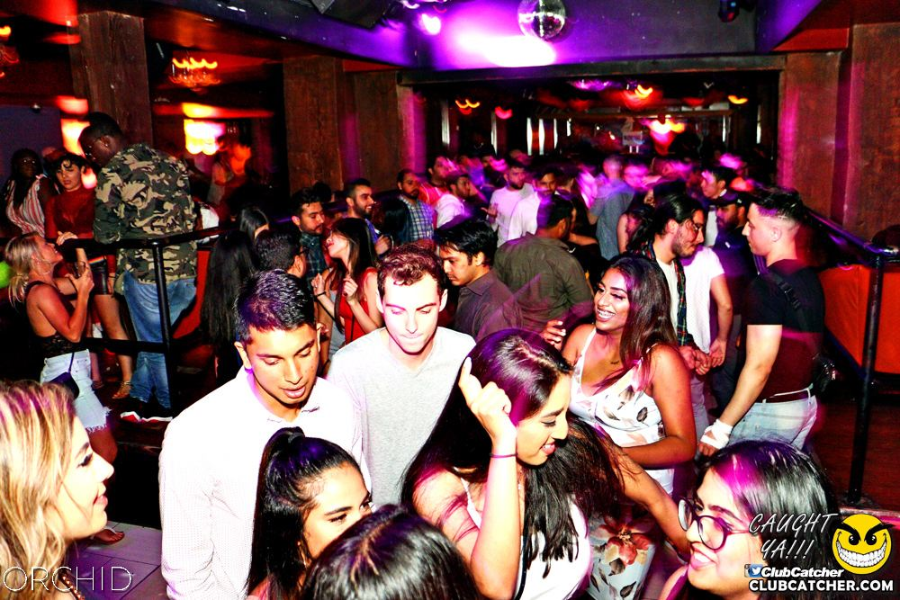 Orchid nightclub photo 1 - June 21st, 2019