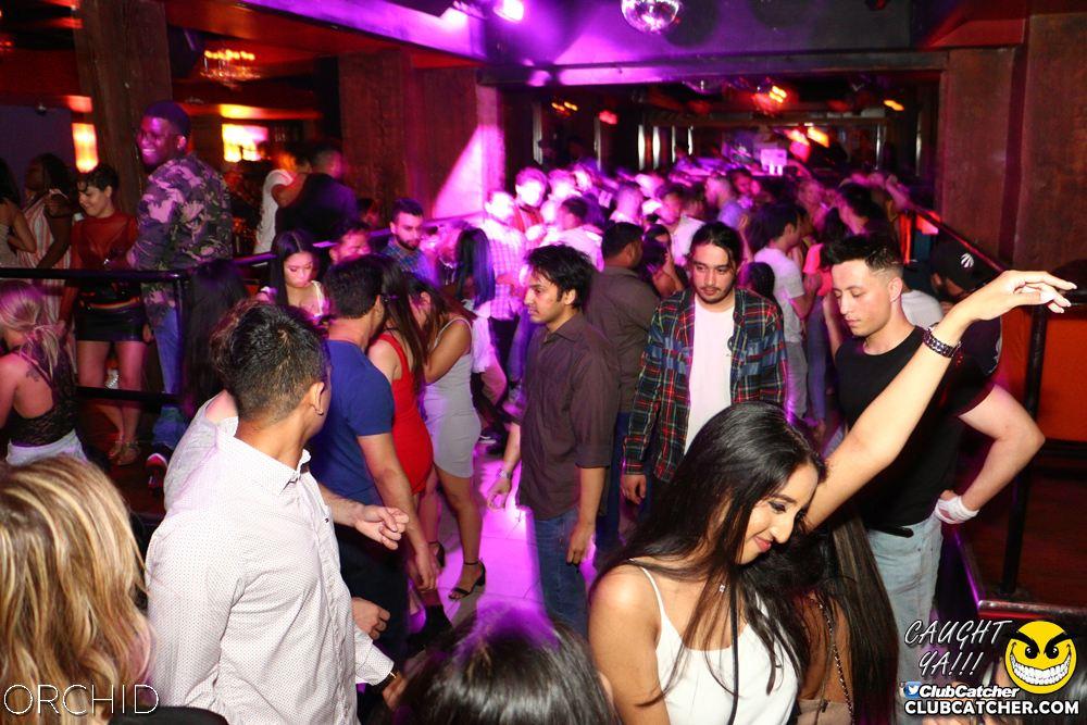 Orchid nightclub photo 27 - June 21st, 2019