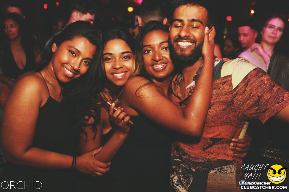 Orchid nightclub photo 54 - June 21st, 2019
