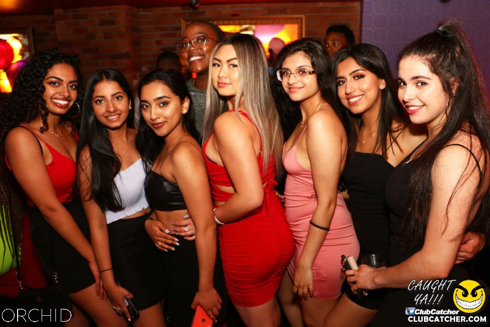 Orchid nightclub photo 56 - June 21st, 2019
