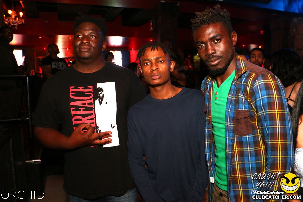 Orchid nightclub photo 60 - June 21st, 2019