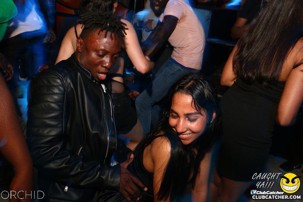 Orchid nightclub photo 82 - June 21st, 2019