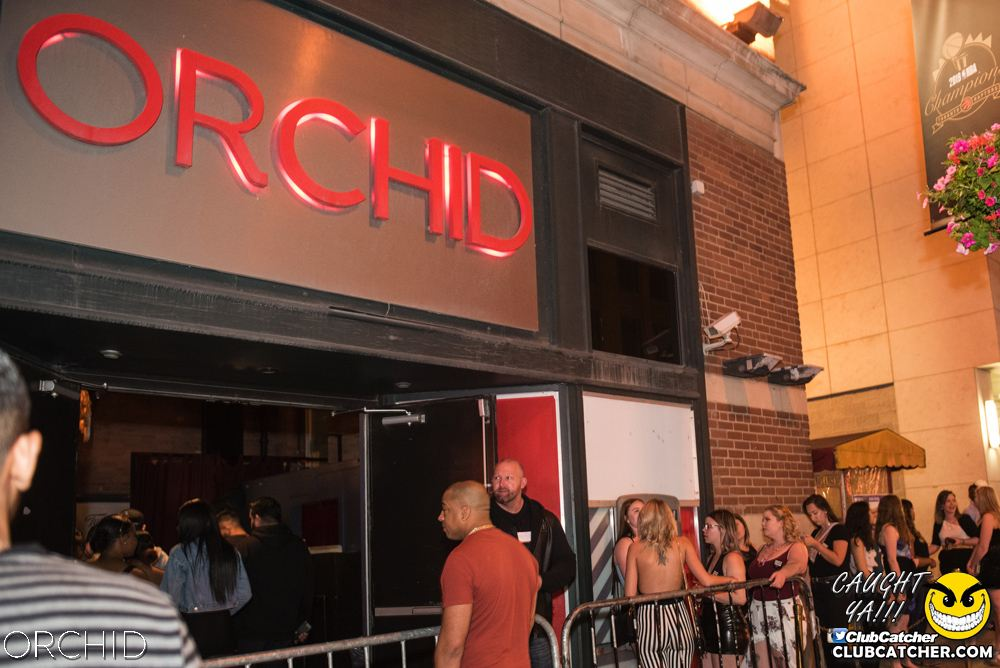 Orchid nightclub photo 36 - June 22nd, 2019