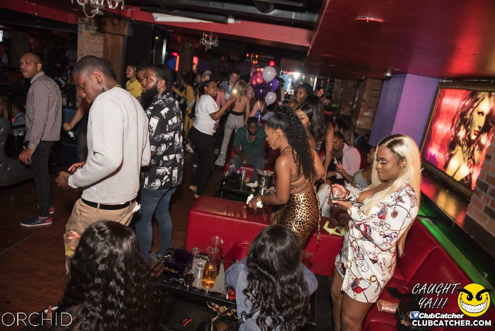 Orchid nightclub photo 77 - June 22nd, 2019
