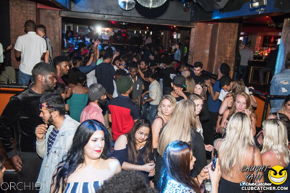 Orchid nightclub photo 81 - June 22nd, 2019