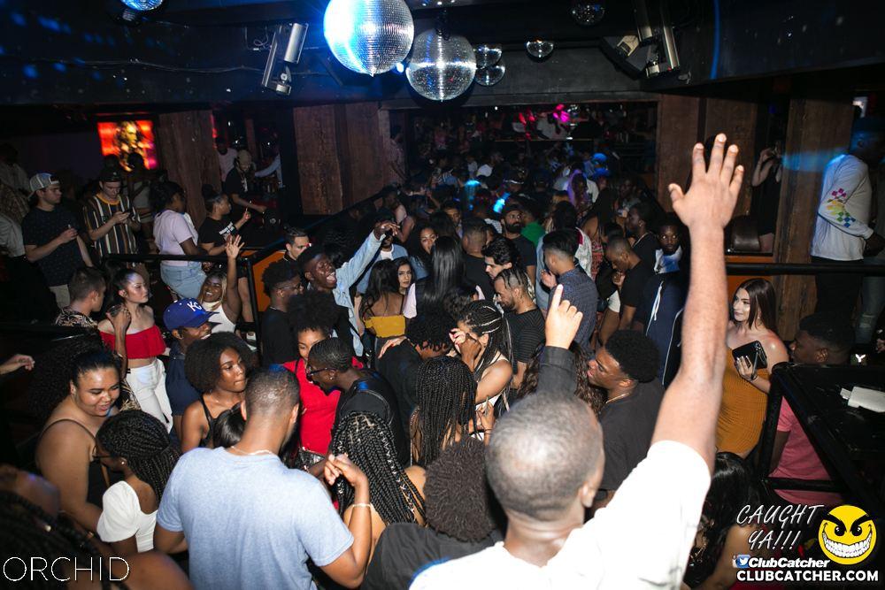 Orchid nightclub photo 14 - June 29th, 2019