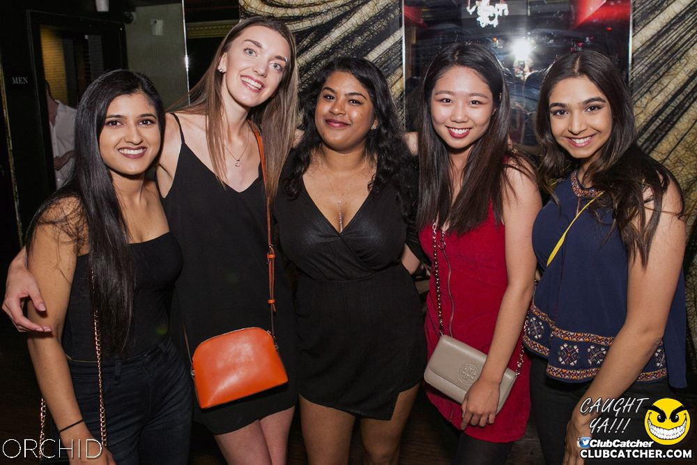 Orchid nightclub photo 17 - June 29th, 2019