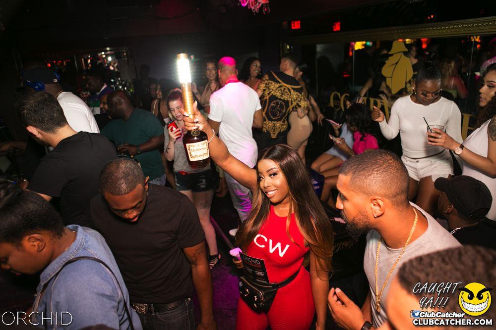 Orchid nightclub photo 29 - June 29th, 2019