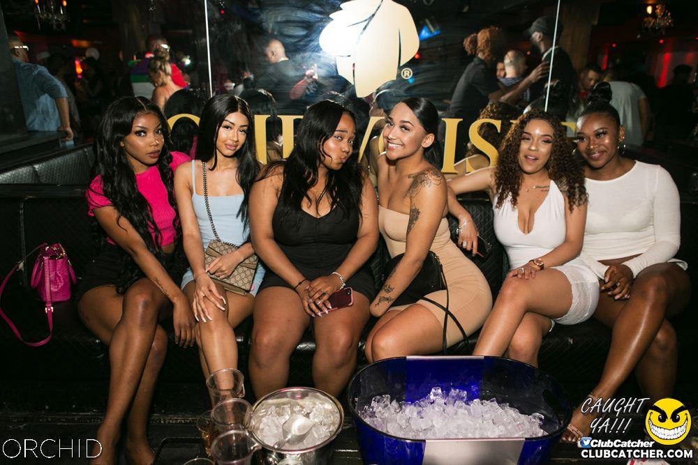Orchid nightclub photo 5 - June 29th, 2019