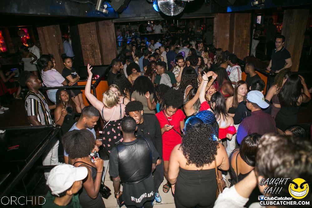 Orchid nightclub photo 43 - June 29th, 2019