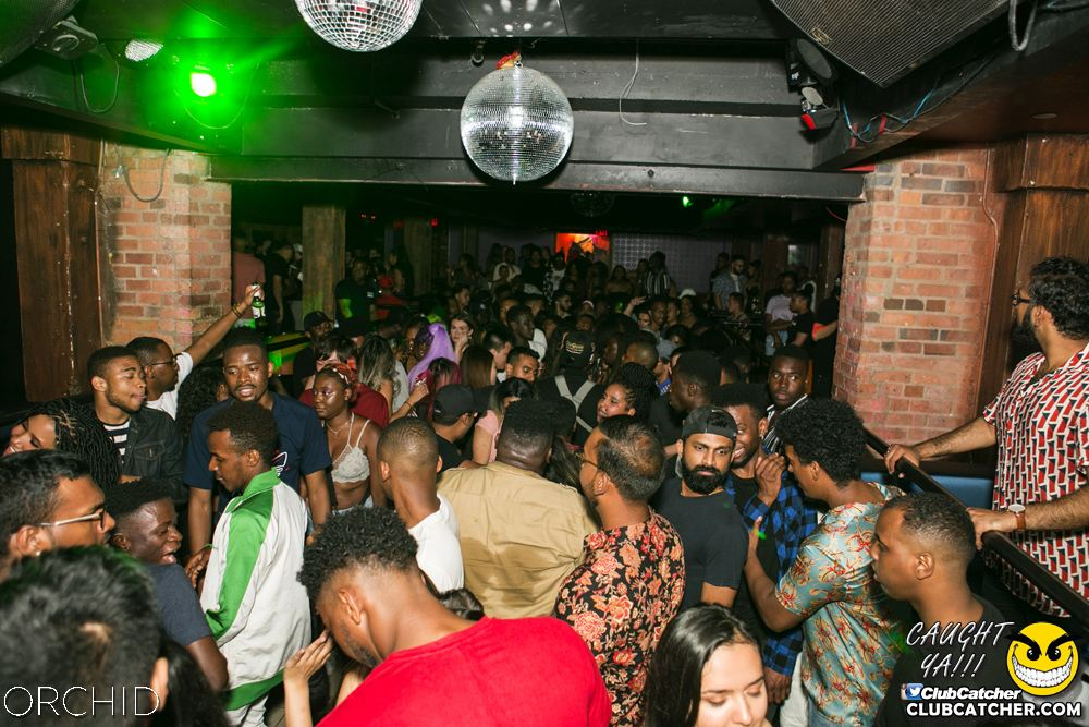 Orchid nightclub photo 59 - June 29th, 2019