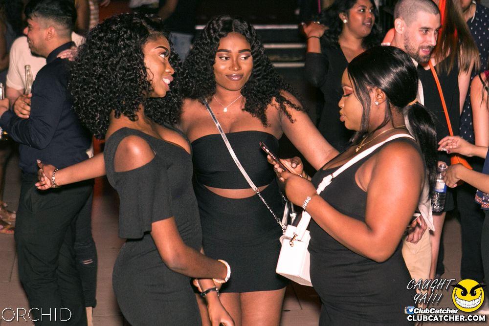 Orchid nightclub photo 60 - June 29th, 2019