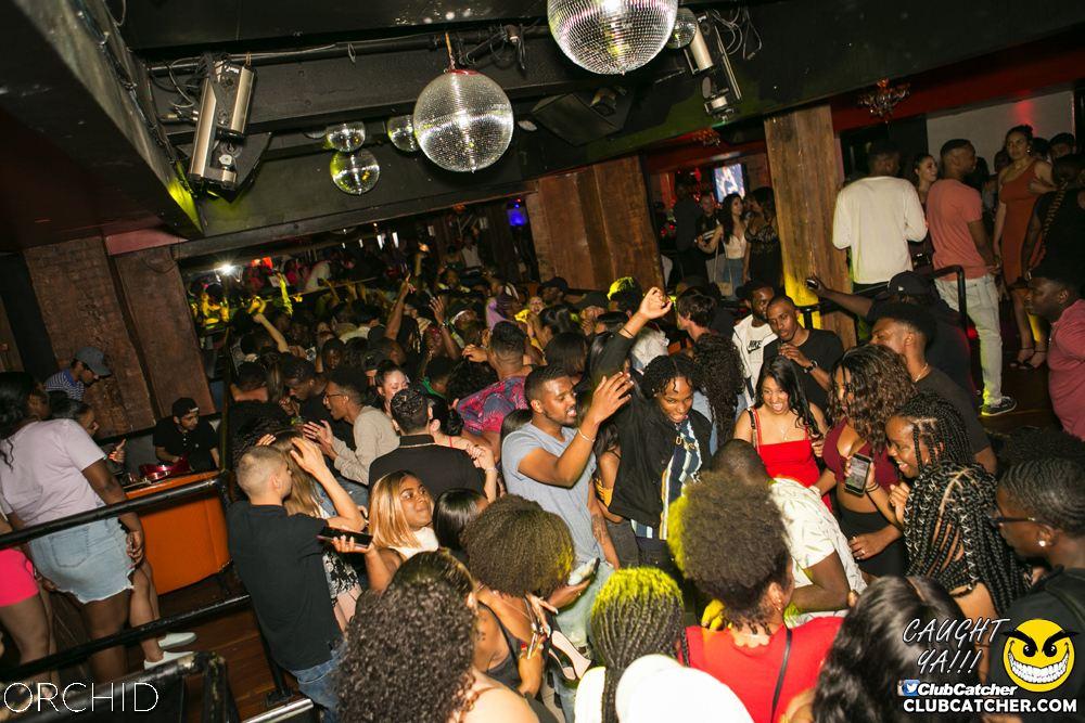 Orchid nightclub photo 85 - June 29th, 2019