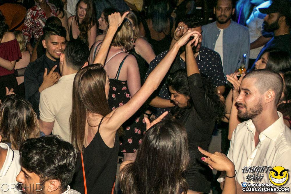 Orchid nightclub photo 87 - June 29th, 2019