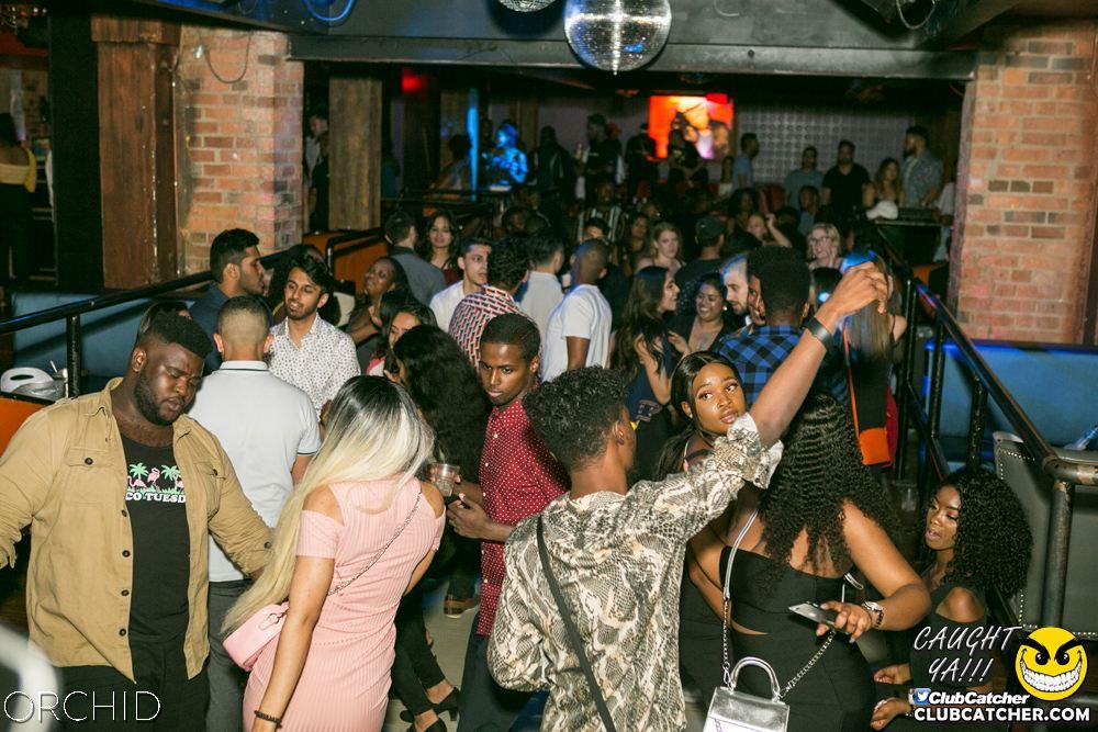 Orchid nightclub photo 88 - June 29th, 2019