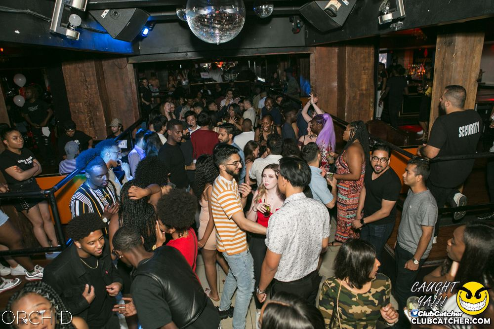 Orchid nightclub photo 92 - June 29th, 2019