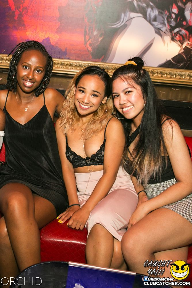 Orchid nightclub photo 52 - July 13th, 2019