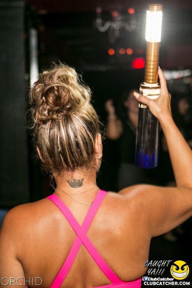 Orchid nightclub photo 20 - July 20th, 2019