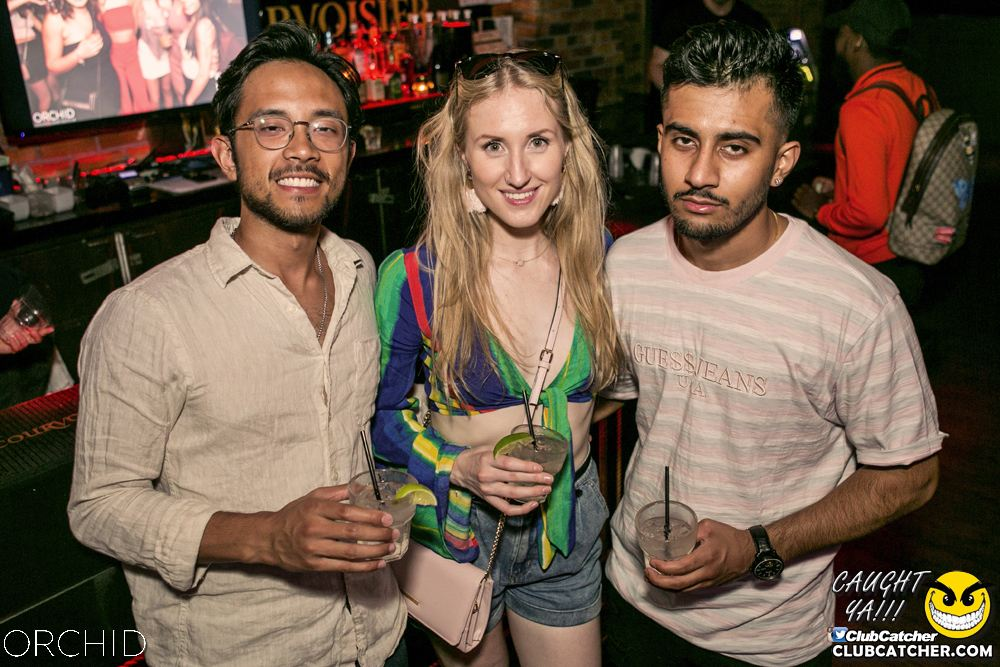Orchid nightclub photo 63 - July 20th, 2019