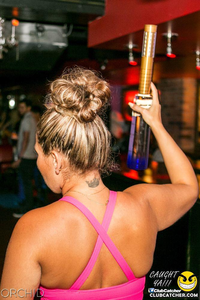 Orchid nightclub photo 64 - July 20th, 2019