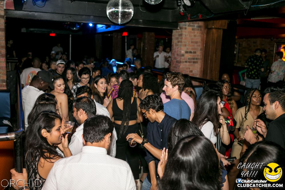 Orchid nightclub photo 81 - July 20th, 2019