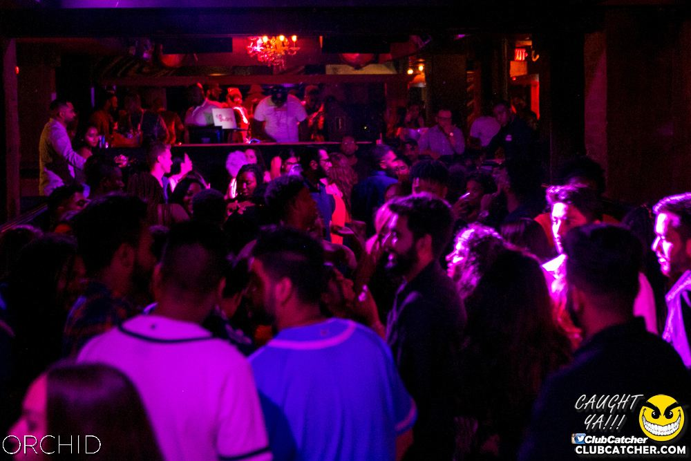 Orchid nightclub photo 20 - July 27th, 2019
