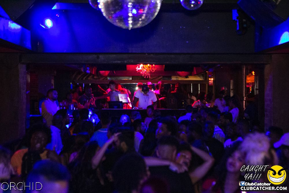 Orchid nightclub photo 54 - July 27th, 2019