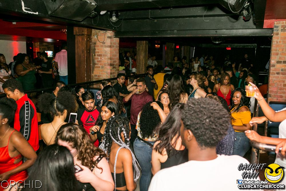 Orchid nightclub photo 57 - July 27th, 2019