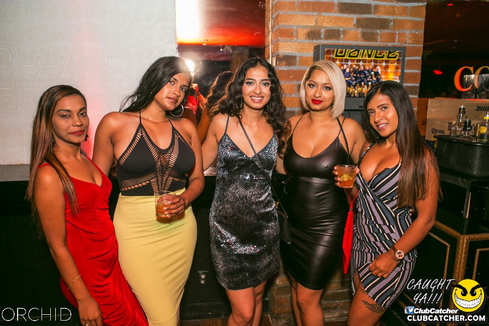 Orchid nightclub photo 70 - July 27th, 2019