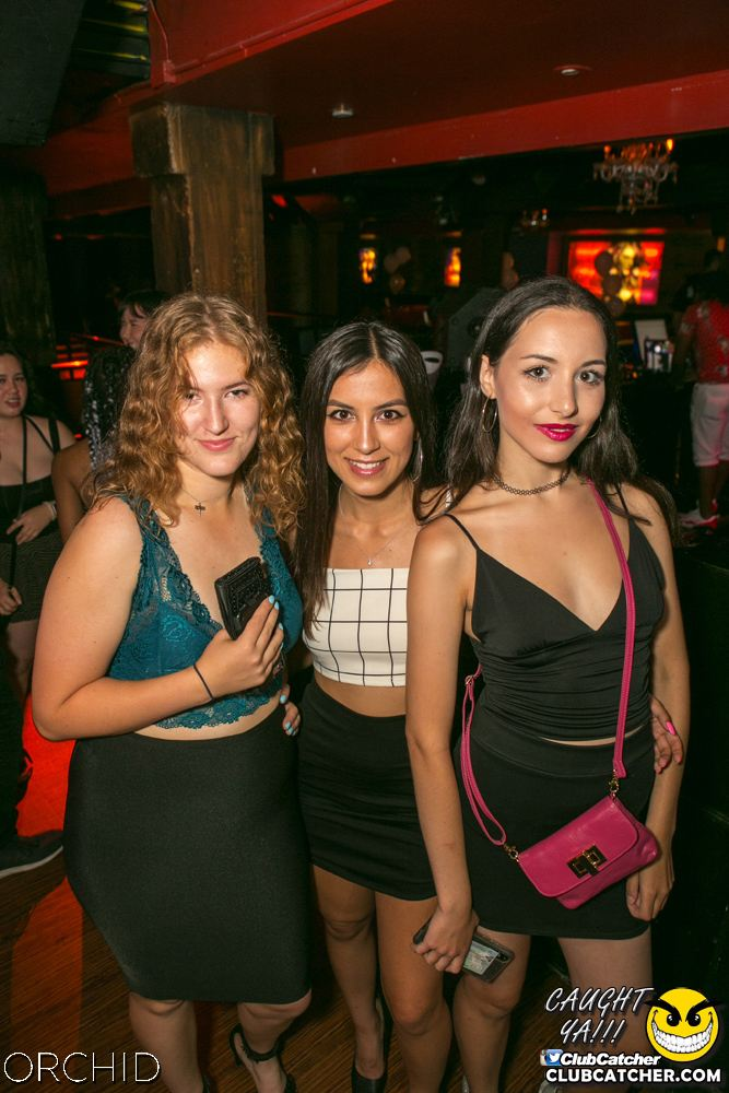 Orchid nightclub photo 72 - July 27th, 2019