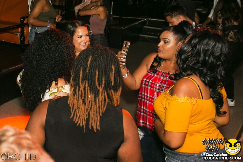Orchid nightclub photo 88 - July 27th, 2019