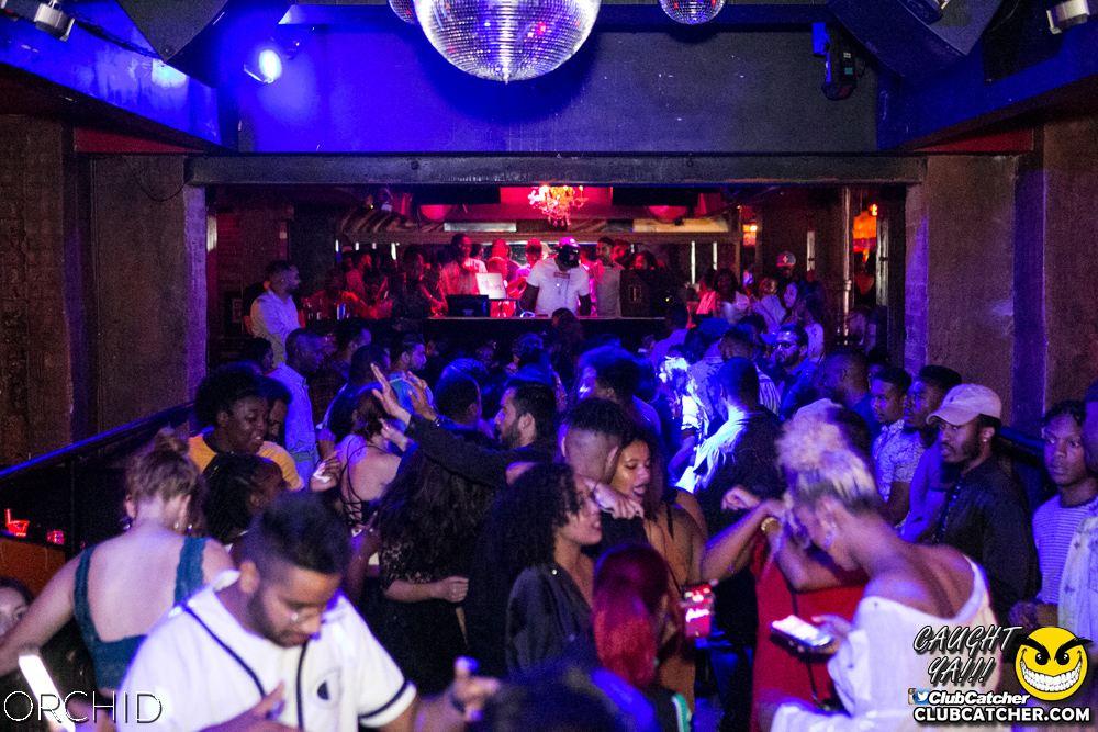 Orchid nightclub photo 89 - July 27th, 2019