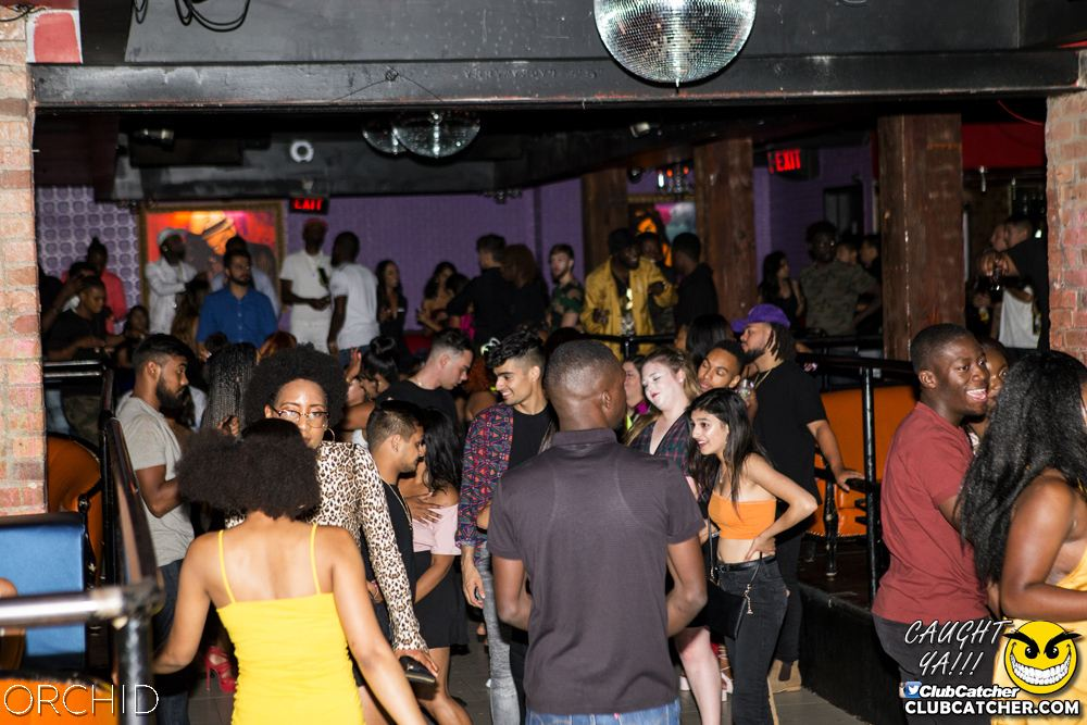 Orchid nightclub photo 1 - August 10th, 2019