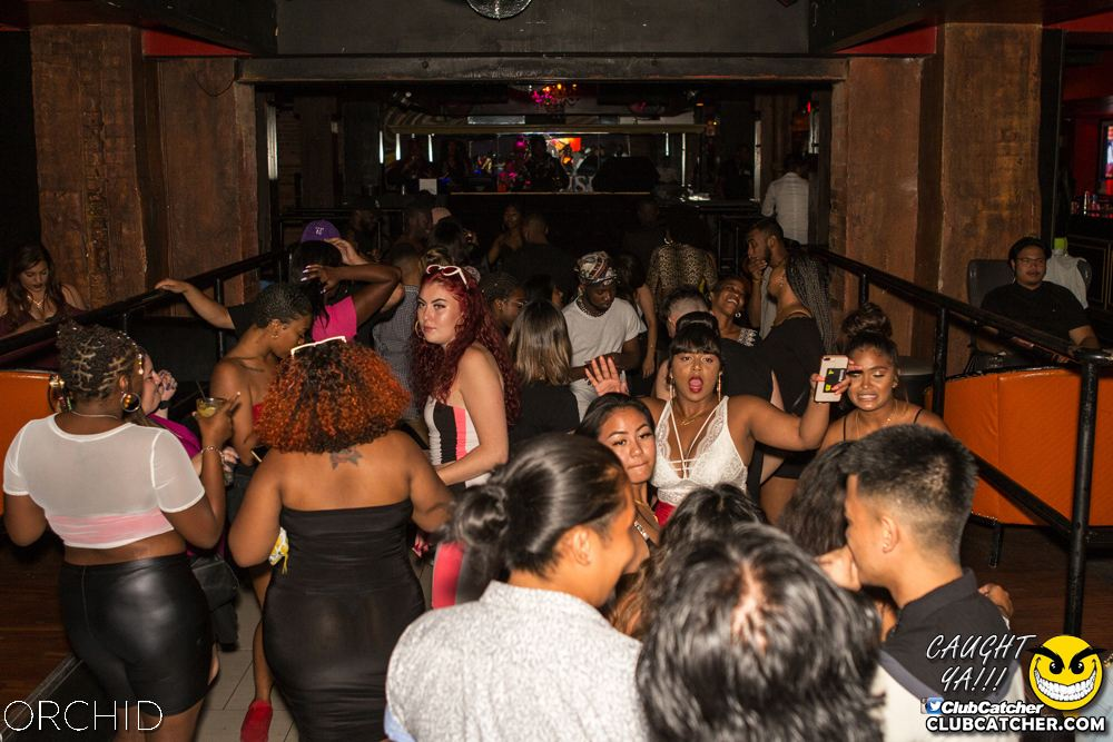 Orchid nightclub photo 27 - August 10th, 2019