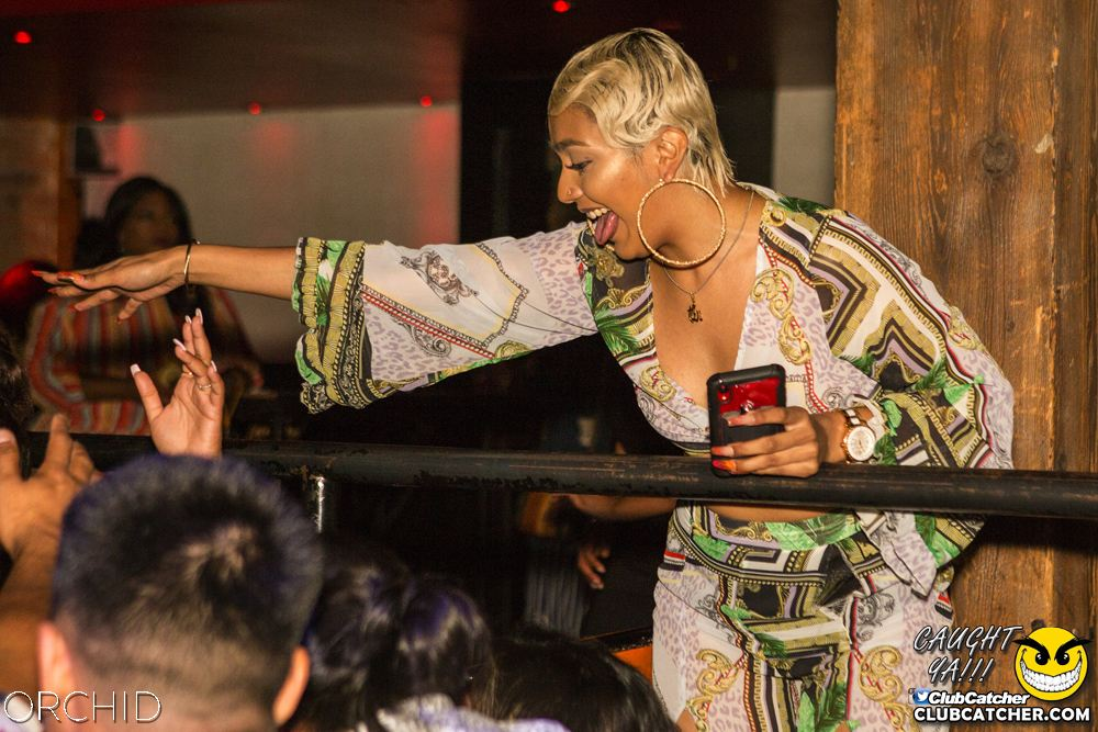 Orchid nightclub photo 5 - August 10th, 2019