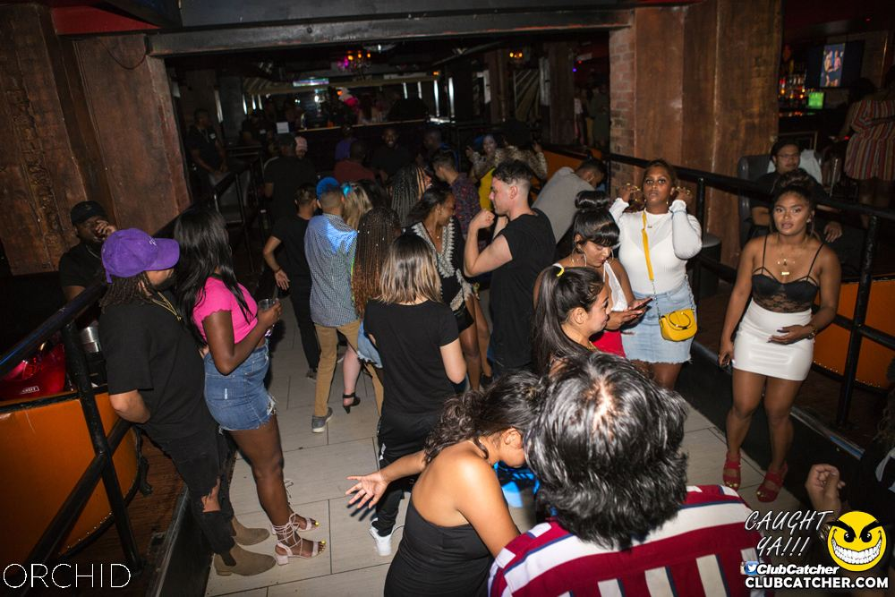Orchid nightclub photo 41 - August 10th, 2019
