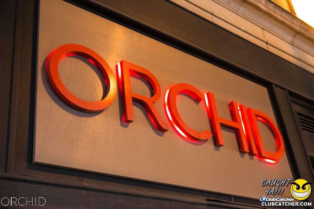 Orchid nightclub photo 6 - August 10th, 2019