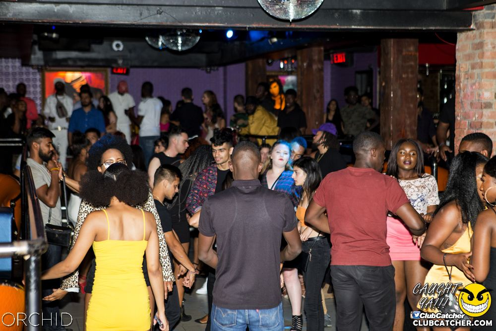 Orchid nightclub photo 61 - August 10th, 2019