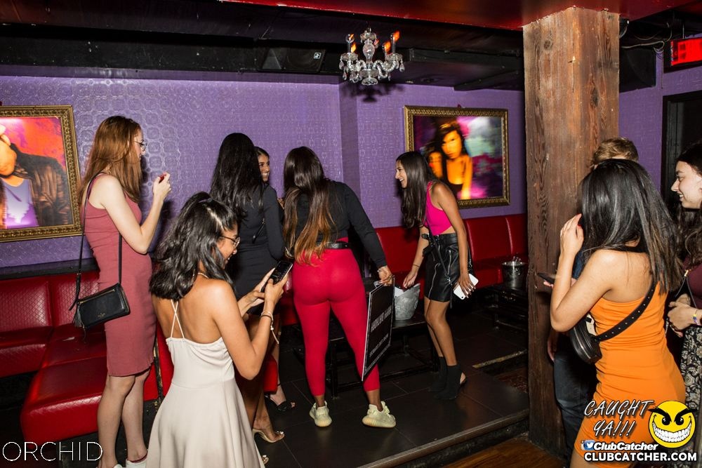 Orchid nightclub photo 71 - August 10th, 2019
