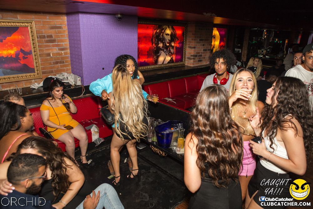 Orchid nightclub photo 74 - August 10th, 2019