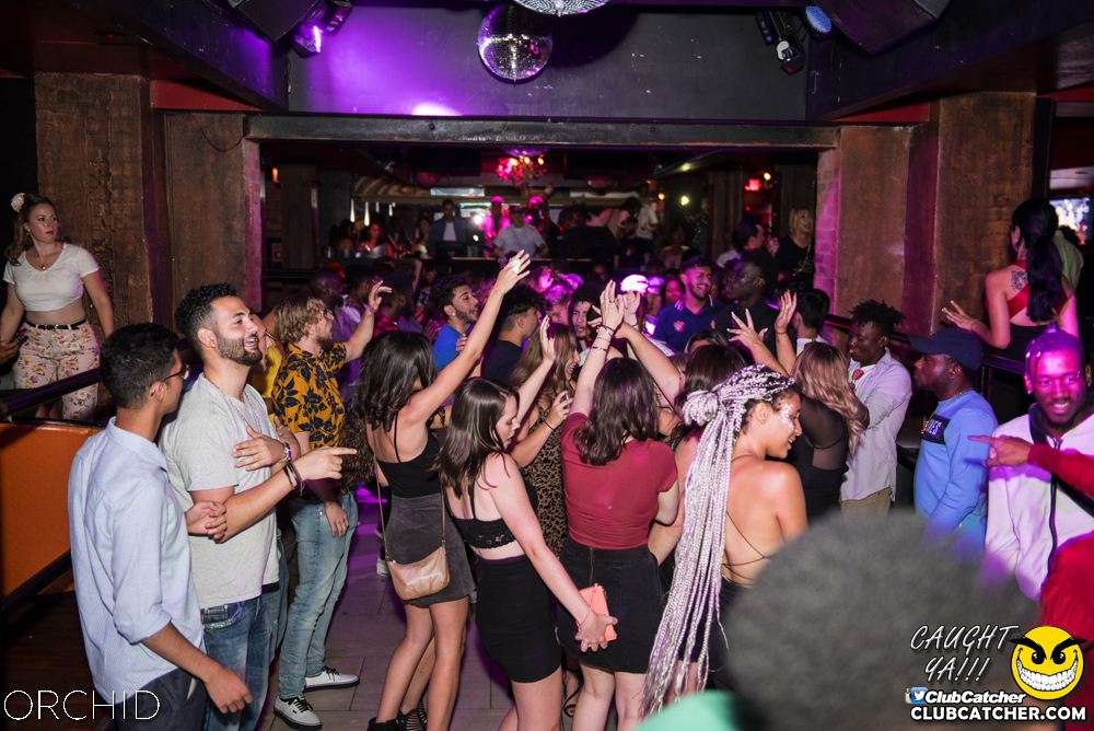 Orchid nightclub photo 14 - August 24th, 2019