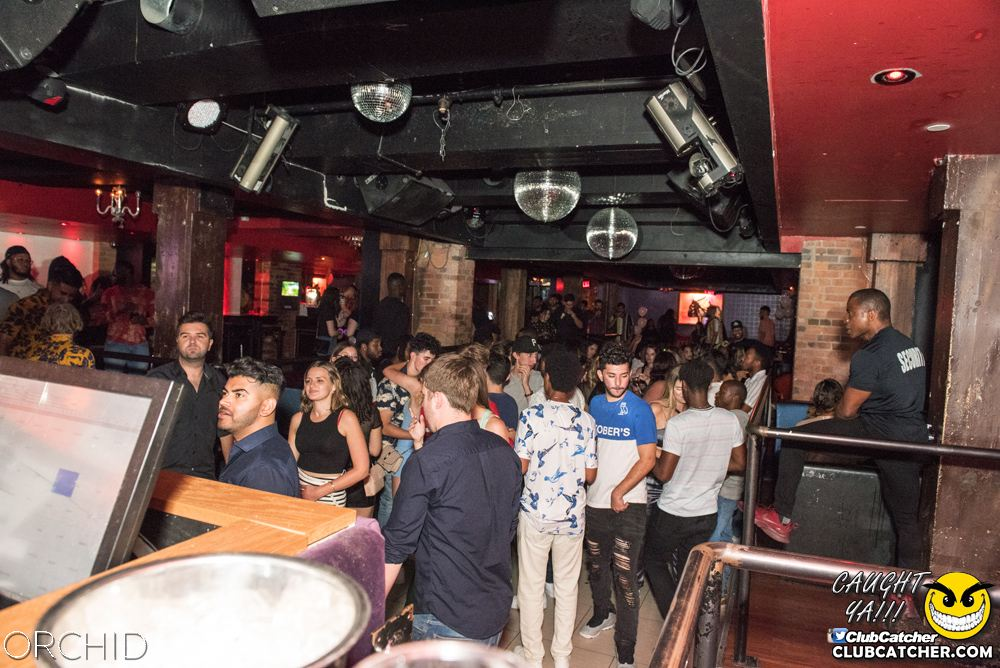 Orchid nightclub photo 36 - August 24th, 2019