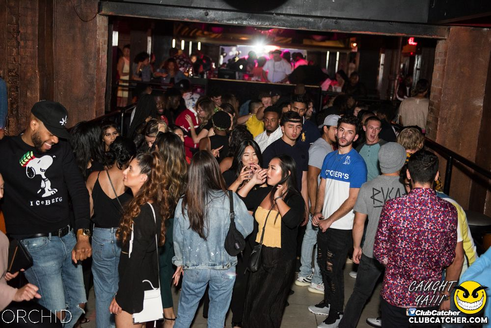 Orchid nightclub photo 52 - August 24th, 2019