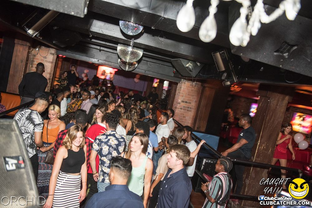 Orchid nightclub photo 59 - August 24th, 2019