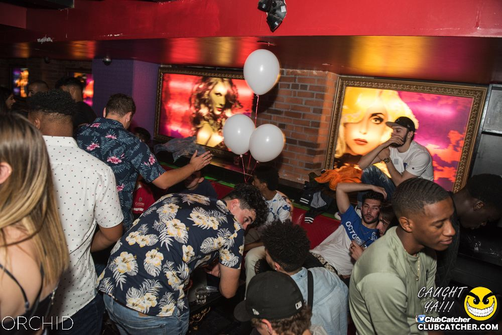 Orchid nightclub photo 75 - August 24th, 2019