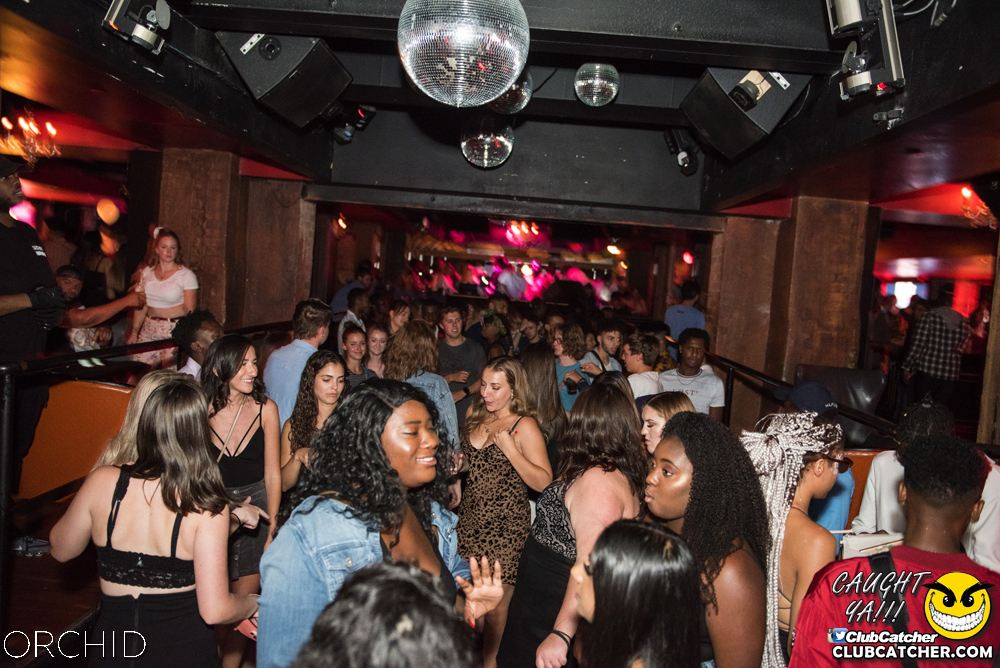 Orchid nightclub photo 91 - August 24th, 2019