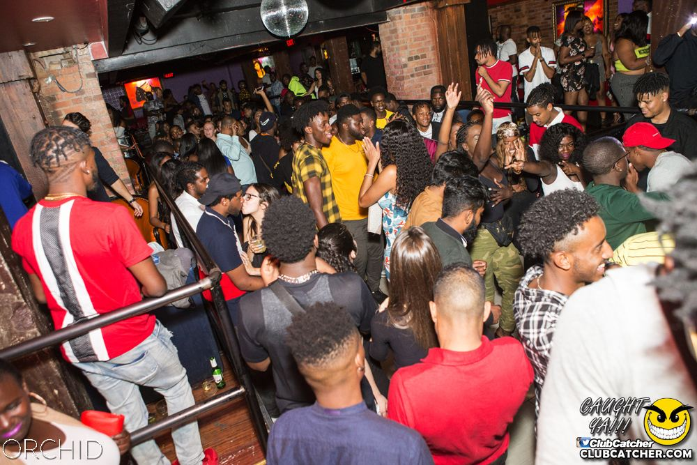 Orchid nightclub photo 1 - August 31st, 2019