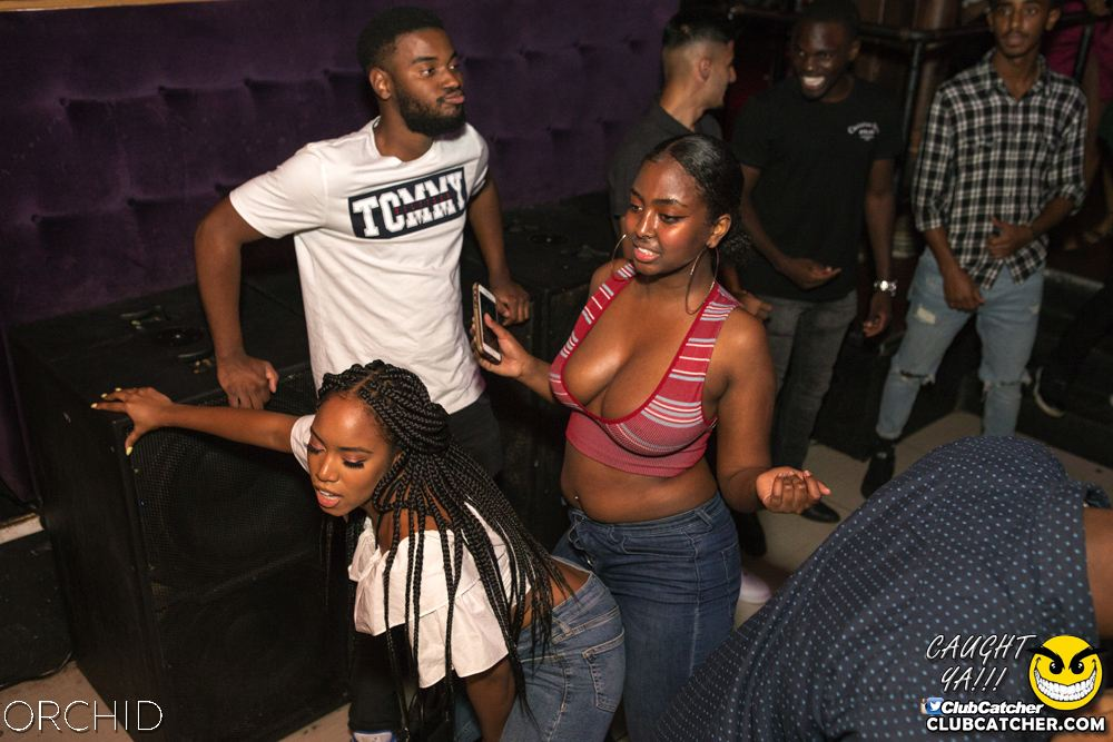 Orchid nightclub photo 13 - August 31st, 2019