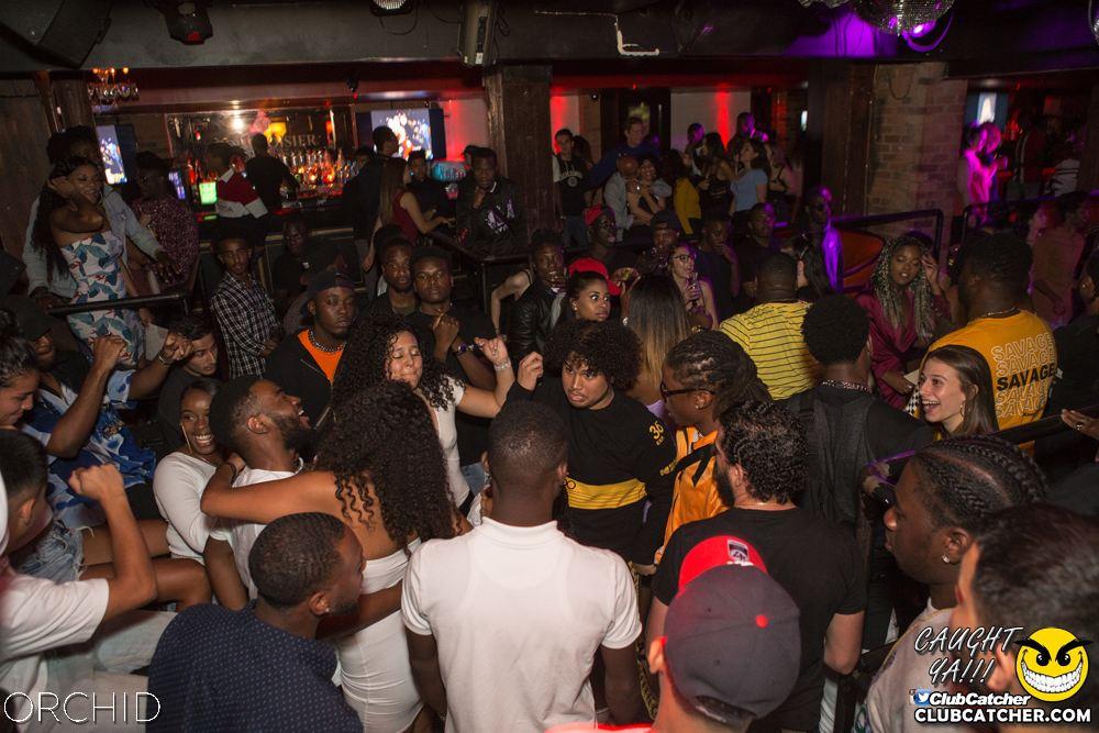 Orchid nightclub photo 35 - August 31st, 2019