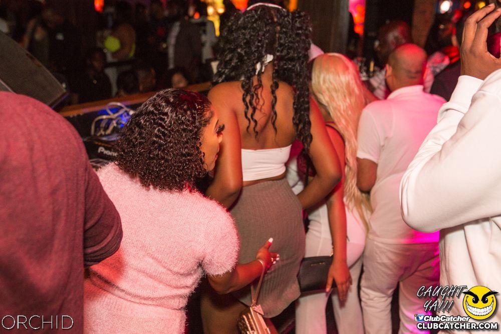 Orchid nightclub photo 39 - August 31st, 2019